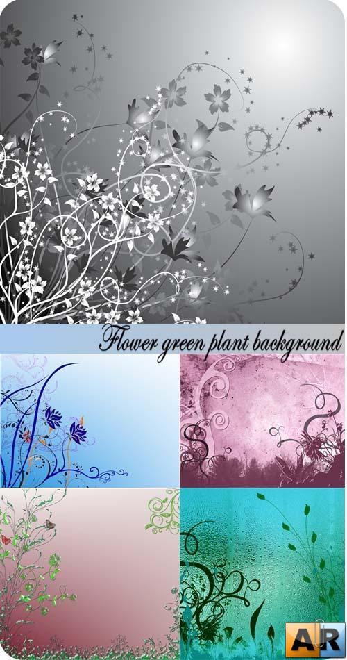 Stock Photo: Flower green plant background