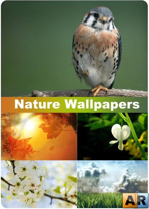 Nature Wallpapers (part 79)