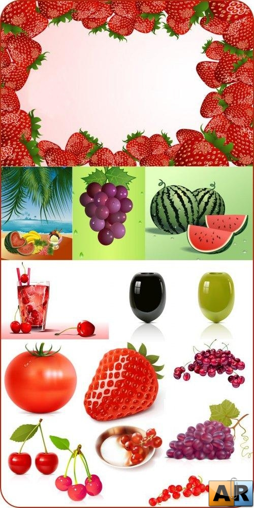 Stock vector - Fruit