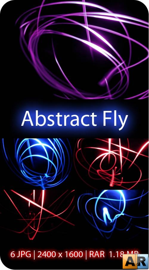Abstract Fly