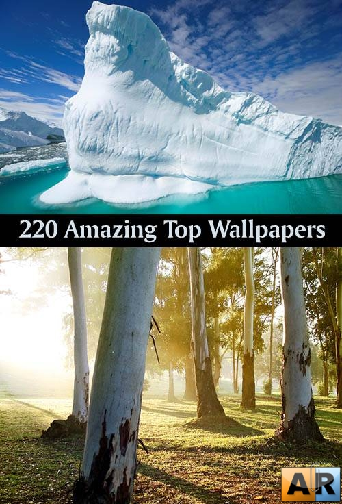 220 Amazing Top Wallpapers