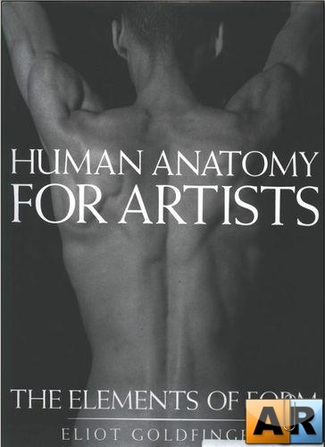 Human Anatomy For Artists. The elements of form