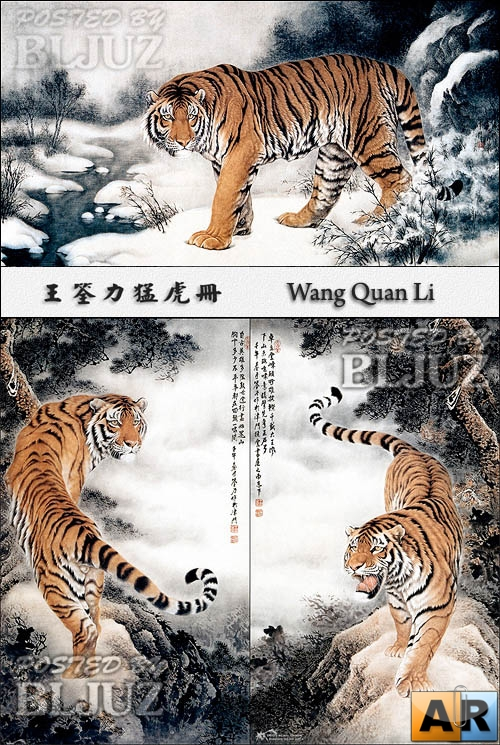Wang Quan Li-Tiger