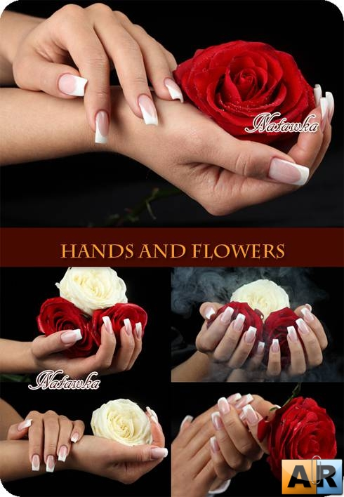 Hands and flowers - Stock Photo