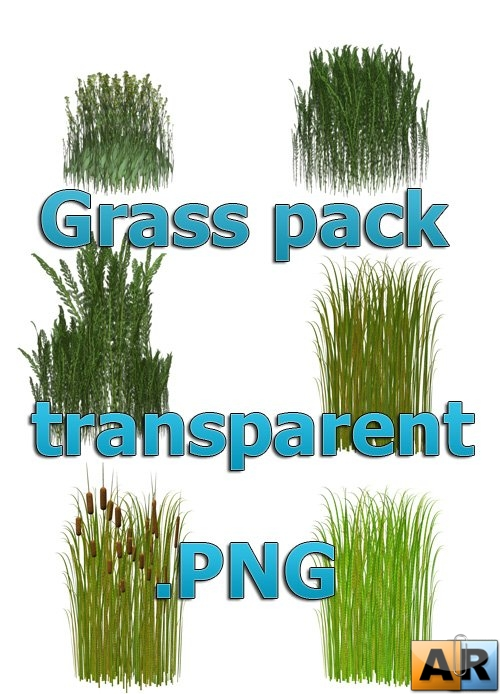 Stock collection - grass at transparent PNG