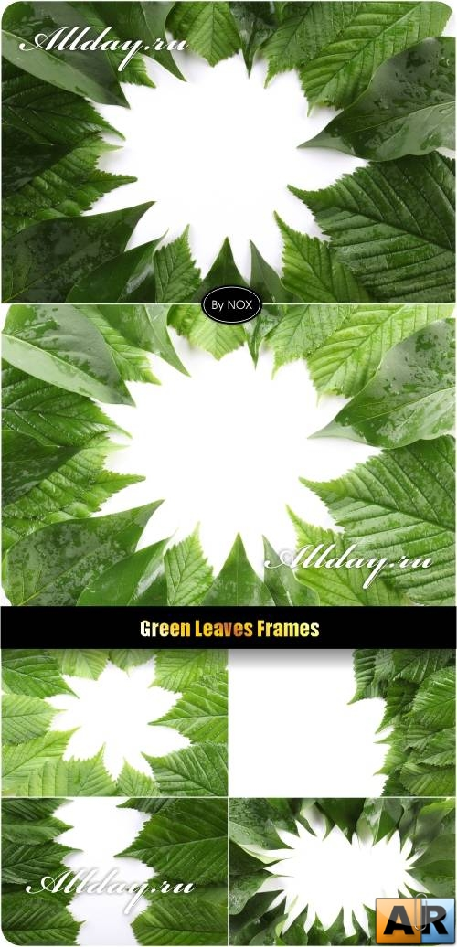 Green Leaves Frames - Зеленые листья