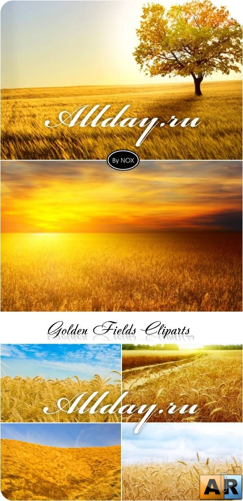 Golden Field Cliparts - Поле, осень