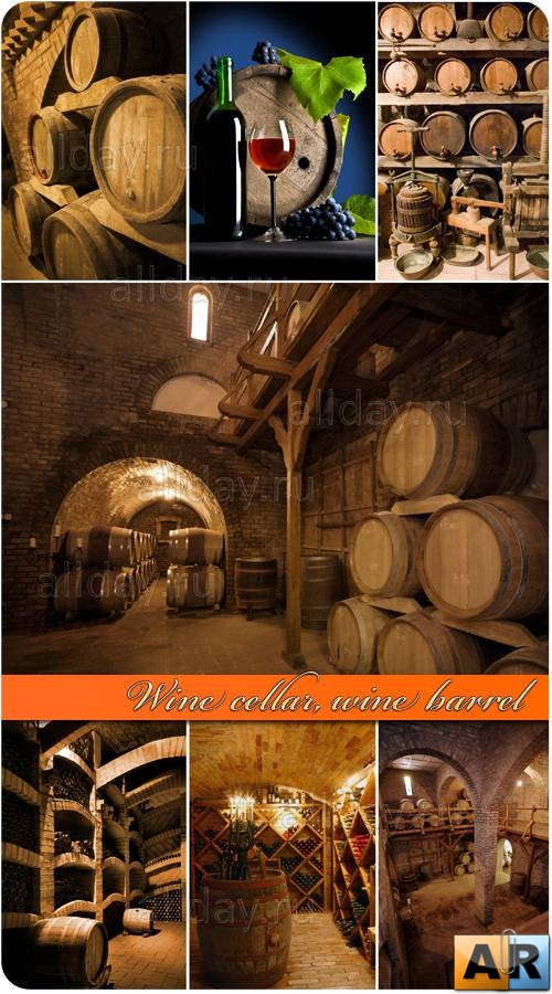 Wine cellar, wine barrel