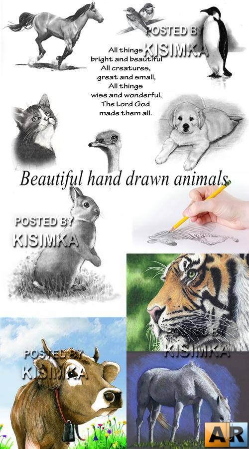 Stock Photo: Beautiful hand drawn animals