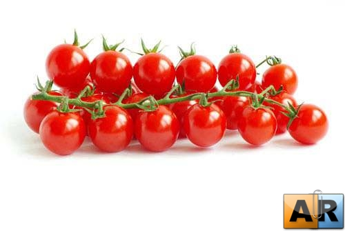 Tomato on the white background | Помидоры на белом фоне