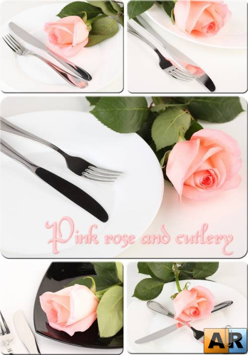 Pink rose and cutlery