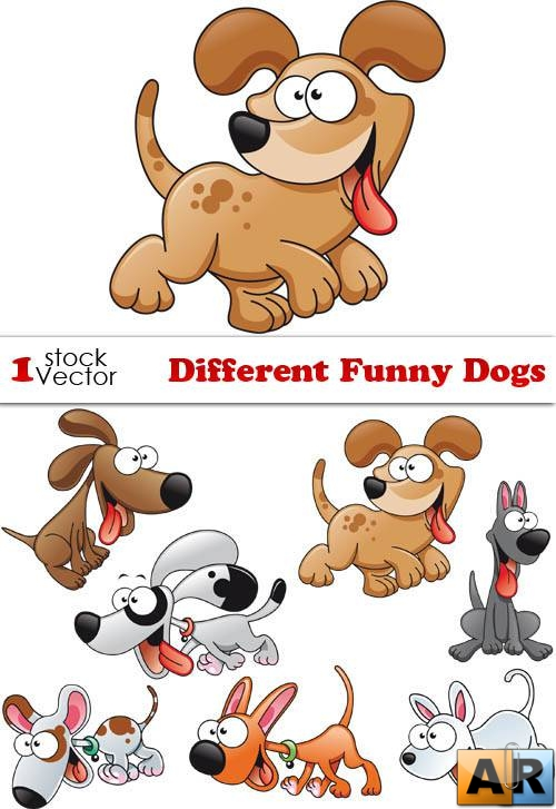 Different Funny Dogs Vector