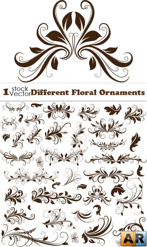 Different Floral Ornaments Vector