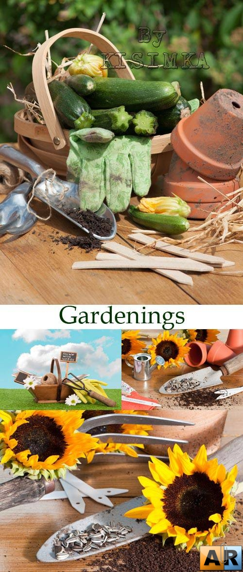Stock Photo: Gardenings