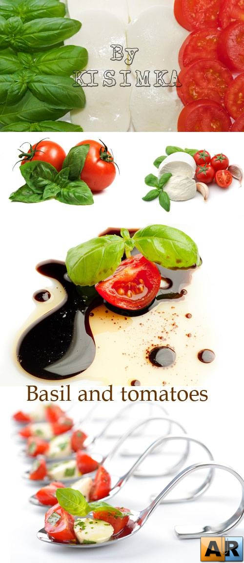 Stock Photo: Basil and tomatoes