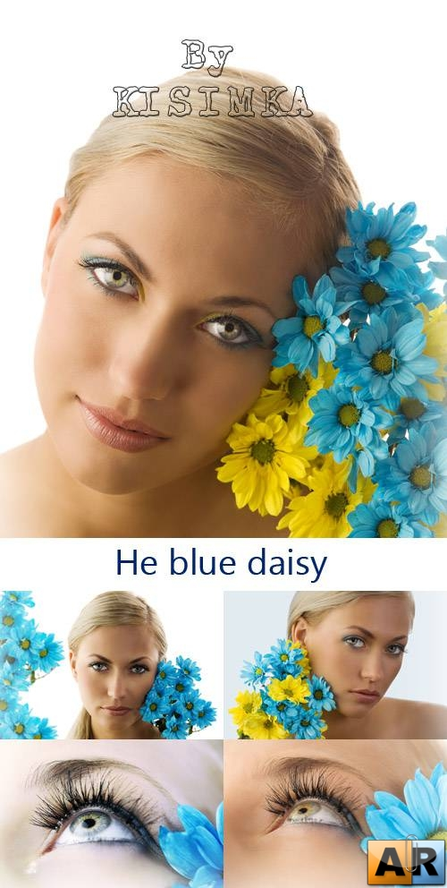 Stock Photo: He blue daisy
